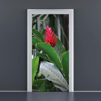Adesivo per porta, 860 x 1.985 mm (L x H)
